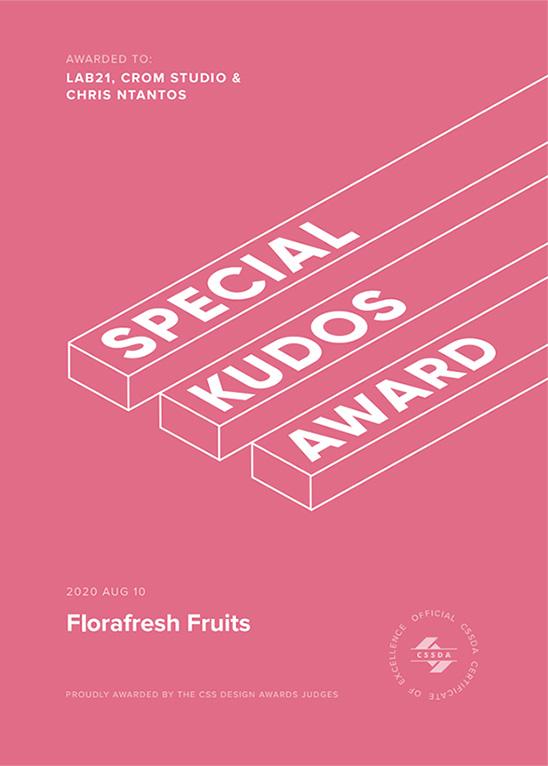 CSS design Awards - special kudos award